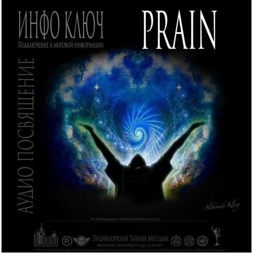 ИНФО-КЛЮЧ «PRAIN»